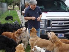 Image: David Rosenfelt with a bunch of dogs- the author and his partner rescue many dogs, mostly large and elderly, many golden retrievers