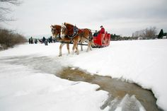 Sleigh rides at L.L.Bean's Winter Carnival - Freeport, Maine
