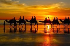 Broome WA Australia - sunset ride on Kyber the beautiful camel!