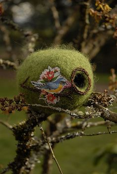 I'm very into birds and nests, can you tell?