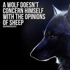 20 Strong Wolf Quotes To Pump You