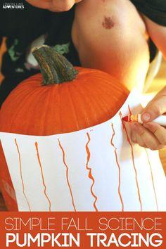 Simple Fall Science Pumpkin Tracing