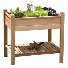 Western red cedar planter box with a slatted lower shelf that would be perfect to plant herbs, lettuce, spinach, etc....