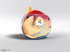 Morbidly Obese Gold Fish