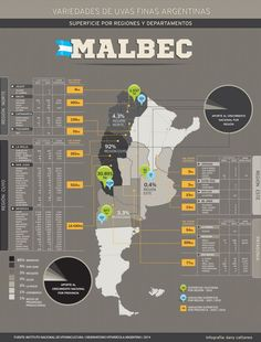 Malbec, its clone and its family Malbec Wine, Barolo Wine, Wine Temperature, Wine Facts, Wine Folly, Pinot Noir Wine, Wine Vineyards, Wine Guide, Wine Bottle Holders
