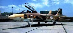 Grumman F-14 Tomcat in service with the Iranian Air Force | Accueil Les Origines de la Réaction Plus vite, plus haut L'Âge du ...