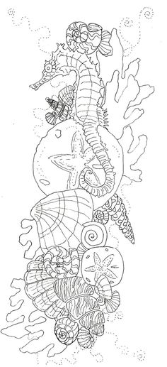 the drawing before it became color Seahorse Shells Ocean  Coloring pages colouri...