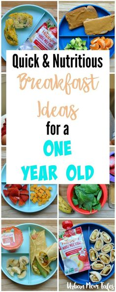 Quick & Nutritious Breakfast Ideas for a One Year Old via @urbanmomtales