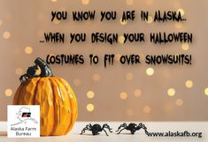 Who else has started planning their costume with this in mind? Farm Humor, Friday Humor, Alaska, Costume, How To Plan, Costumes, Fancy Dress, Costume Dress