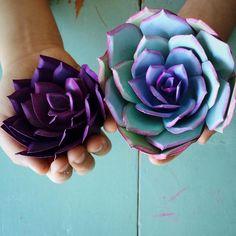 Paper succulents. #paperflowers