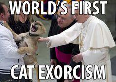 Not Catholic