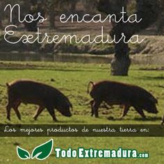Porque nos encanta Extremadura!!!