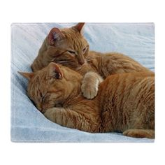 Brotherly Love Throw Blanket on CafePress.com
