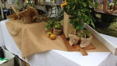 Love the Burlap and white combo for market stall School Fair, Old School, Popcorn Stand, Market Stalls, Burlap, Popcorn Cart, Hessian Fabric, Market Stands, Jute