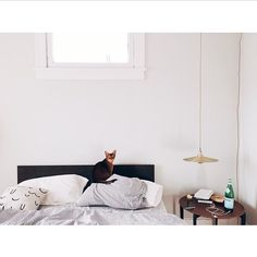 brendanravenhillstudio's photo on Instagram