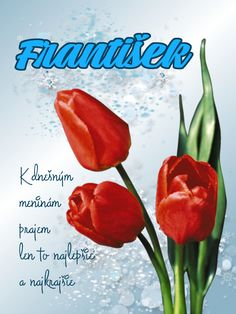 František K dnešným meninám prajem len to najlepšie a najkrajšie