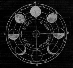 """Athanasius Kircher - Lunar Phases, """"Ars Magna Lucis et Umbrae"""", 1646 Zodiac Wheel, Alchemy Art, Aesthetic Space, Lunar Phase, Star Chart, Science Art, Moon Phases, Occult, Cute Drawings"""