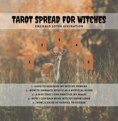 Tarot Spread for Witches - Yoo-hoo witches! Here's a tarot spread for you. Tarot Card Spreads, Tarot Cards, Wicca Witchcraft, Magick, Wiccan Runes, Images Esthétiques, Tarot Astrology, Tarot Learning, Tarot Card Meanings