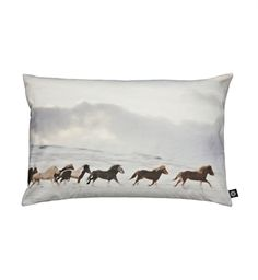Icelandic Horses pillow