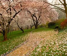 Americau0027s Most Beautiful Gardens | Longwood Gardens, Kennett Square And  Gardens