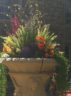 Gina Avino Artistic Design Floral Urns for Spring