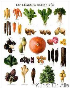 Atelier Nouvelles Images - Wiedergefundene Gemüse