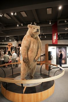 Stuffed bear at Museum of the North, University of Alaska Fairbanks campus.    This used to scare the poo out of me as a child!  LOL!!!