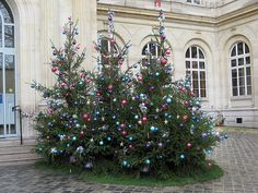 Christmas Trees at la Mairie (City Hall) du 3e...