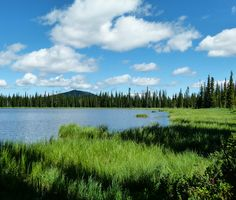 Going Off-the-Beaten-Path on Elk Meadows Road. This photo: Lily Lake on Elk Meadows Road, Idaho