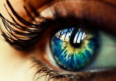 Amazing Pictures Of Eye | WoW PicS |