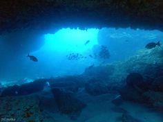Inside a cave at Rottnest Island #uw #scuba #dive #padi #uwlife #rottnest…