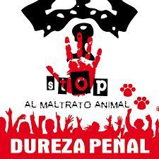 Resultado de imagen para no maltratar a los animales dibujos