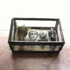 Miniature Museum - Larger Glass Box Assemblage Curiosity Art Object.