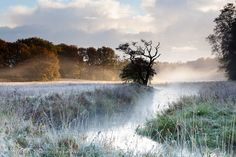 Foggy Autumn Morning at the Drentsche Aa - the netherlands