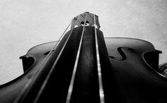 Monochrome cello