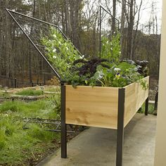 Streamlined 2' x 8' cedar planter box fits anywhere. Unique, pivoting vegetable trellis creates a fully integrated support system.