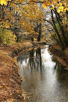 Autumn in Wilanow, Poland