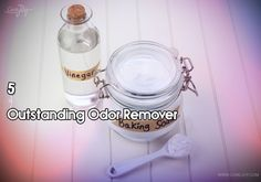 5-outstanding-odor-remover