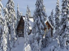 Log Cabin in the Snow- Mount Seymour, North Vancouver, British Columbia #exploreVanNS