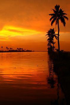 Kerala sunset, India  http://www.3elephants.in  http://www.facebook.com/3elephants.cheraibeach  http://www.les3elephants.wordpress.com