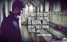 Dumbledore is amazing