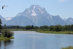 CARRIE CAPTURED THE NATURAL BEAUTY OF THIS SPOT AT GRAMD TETONS