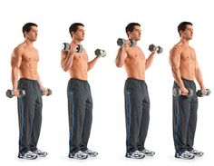 Top 10 Best Dumbbell Exercises to Explode Your Arm Muscles