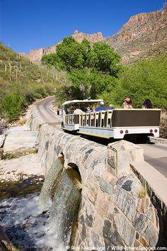 Sabino Canyon Tram Photos