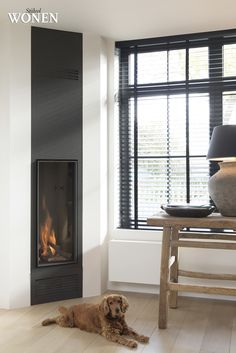 + #fireplace