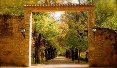 Monasterio de Piedra, Spain (hotel & national park).