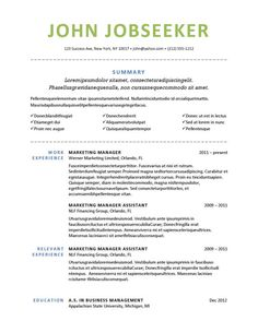 Resume Templates Microsoft Word 2010 Entrancing Buy Professional Resume Templates  Professional Resume Template .