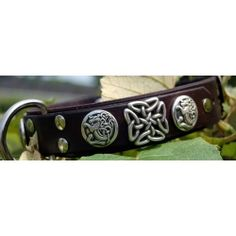 This lovely Celtic inspired handmade leather dog collar is lavishly decorated with 4 Celtic Dragon conchos and two square Celtic knot conchos. $80.00 avilable on Artsydog.com