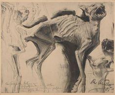 Richard Müller (1874-1954). Hungry Cat. Photogravure on thin cardboard, 1905
