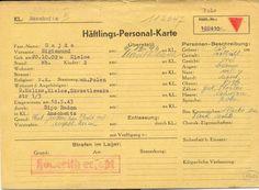 Gallery / Auschwitz-Birkenau